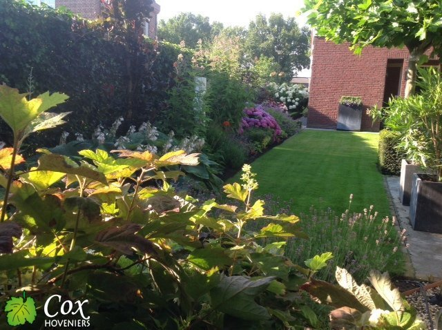 Cox Hoveniers beplanting