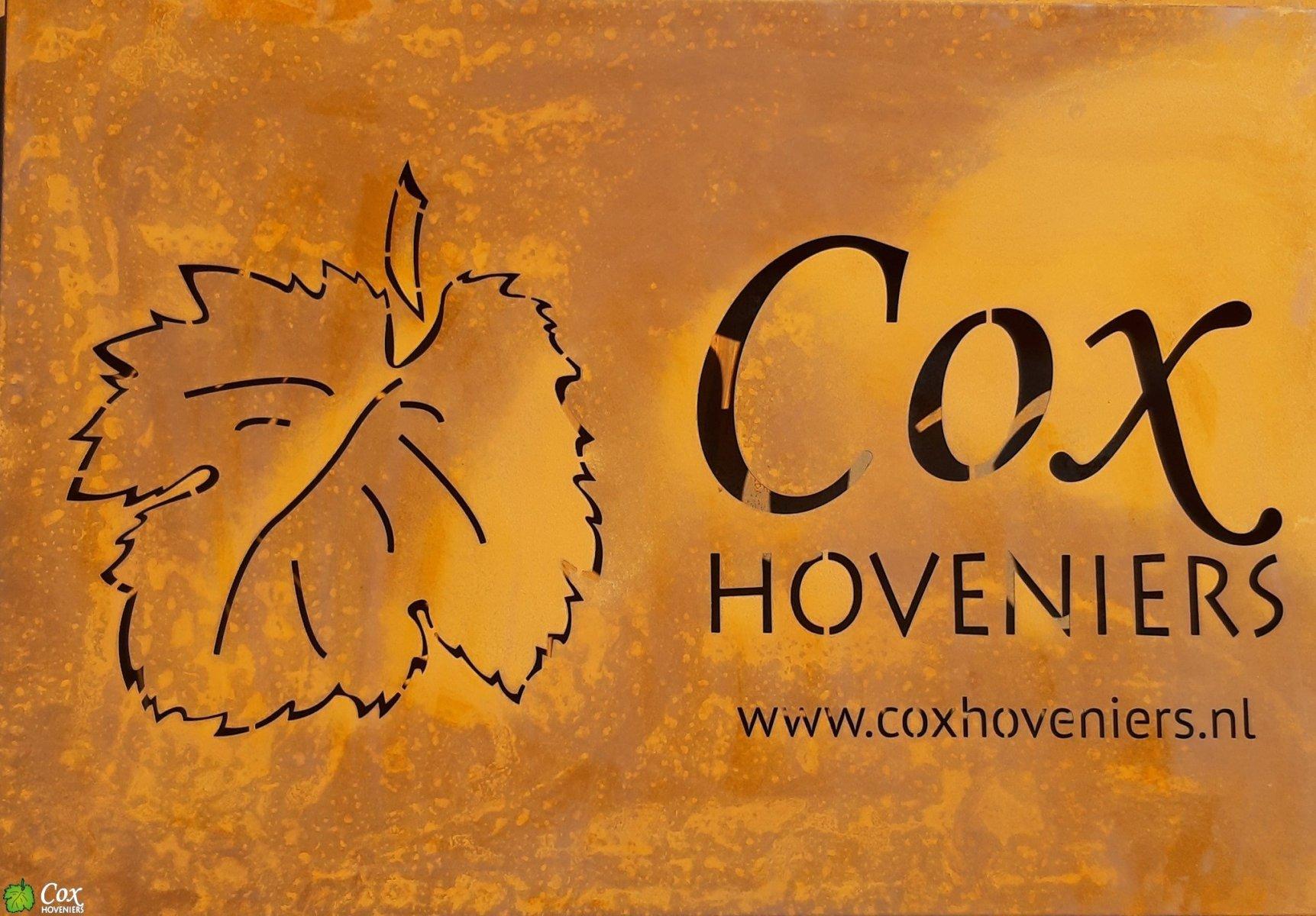 Cox Hoveniers cortenstaal