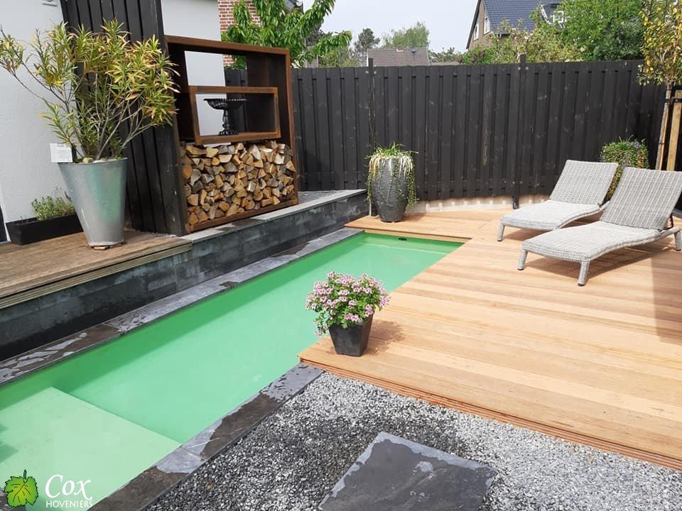 Cox Hoveniers Plunge Pool